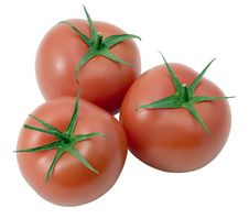 Free Tomatoes Isolated On White Background (clipping Pa Stock Photo - 6344860