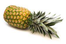 Fresh Pineapple Royalty Free Stock Photo