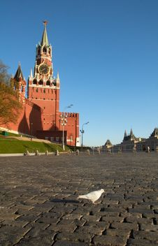 Free White Dove On Red Square In Moscow Royalty Free Stock Image - 6348086
