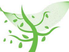 Free Autumn Tree In Wind Stock Photo - 6348450
