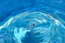 Free Shining Water-drop Royalty Free Stock Images - 6348639