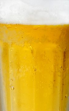 Free Beer Stock Photos - 6348953
