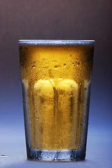 Free Beer Stock Photography - 6348972