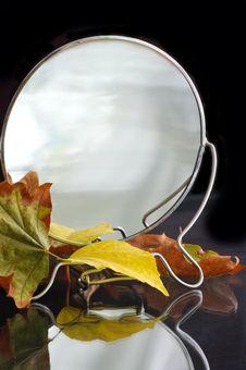 Reflection Of The Autumn Stock Photos