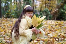 Free Girl In Autumn Park Stock Photo - 6349290
