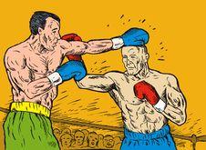 Free Boxer Stock Photo - 6349330