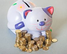 Free Cat - Moneybox Stock Images - 6350334