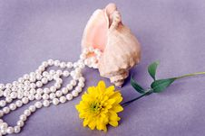 Free Pearl Beads With Yellow Flower Royalty Free Stock Images - 6350349