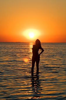 Free Silhouette Of The Young Woman Stock Image - 6351051