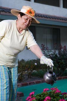 Free Senior Gardener Royalty Free Stock Images - 6351149