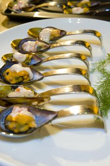 Free Mussel Starter Royalty Free Stock Photo - 6351585
