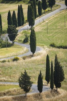 TUSCANY Countryside, Devious Street With Cypress Royalty Free Stock Images