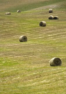 Tuscany Countryside, Hayball Royalty Free Stock Image