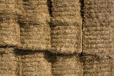 Free Straw Bales Royalty Free Stock Image - 6353256