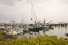 Free Fishing Boats Over Hedge Stock Photos - 6355813