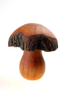 Free Wood Mushroom Stock Images - 6357824
