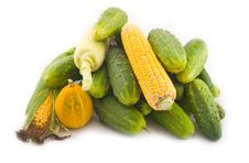 Free Cucumbers With Corn And A Pumpkin Royalty Free Stock Image - 6358756