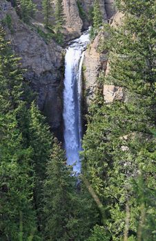 The Tower Falls In Yellowstone National Park Royalty Free Stock Photo