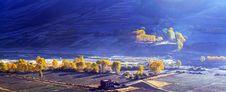 Free Altiplano Autumn Royalty Free Stock Photography - 6359757