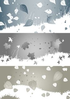Free Autumn Background, Banner Royalty Free Stock Photos - 6361398