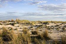 Free Sand Dune During Dusk Stock Photography - 6362022