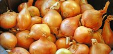 Free Orange Onions Background Stock Photography - 6366592