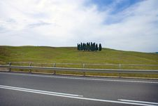 Free TUSCANY Countryside, Street And Cypress Royalty Free Stock Photo - 6366665