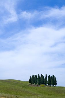 Free TUSCANY Countryside, Landscape With Cypress Stock Image - 6366711