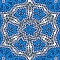 Free Woven Floral Compass Mandala Royalty Free Stock Photo - 6378405
