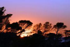 Free Sunset 6 Royalty Free Stock Photo - 6370235