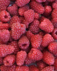 Free Raspberries Stock Image - 6370851