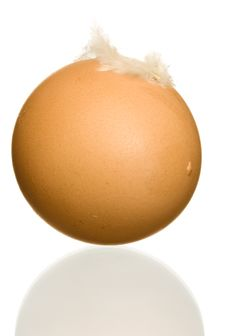 Egg With Feather Royalty Free Stock Image