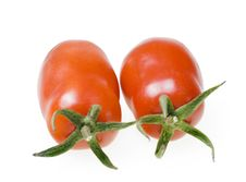 Free Tomatoes Royalty Free Stock Images - 6371809