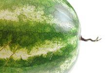 Free Melon Closeup Royalty Free Stock Photography - 6372087