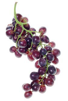 Free Grape Cluster Stock Photo - 6372100
