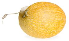 Free Melon Isolated On White Royalty Free Stock Photography - 6372137