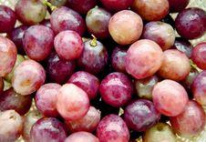 Free Purple Grapes Stock Photo - 6372450