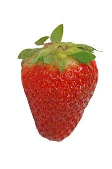 Free Strawberry Royalty Free Stock Photo - 6373945
