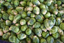 Free Brussel Sprouts Stock Photos - 6374203