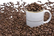 Free White Cup And Coffee Beans Stock Images - 6374284