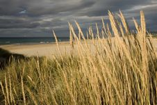 Free Cloudy Beach Stock Image - 6374641