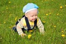 Free Child On Grass Stock Photo - 6375610