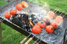 Free Grilled Tomato Royalty Free Stock Photos - 6378978