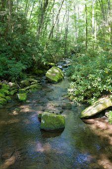 Free Small Mountain Stream Royalty Free Stock Photo - 6380175