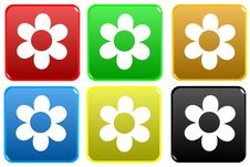 Free Web Button - Flower Stock Images - 6380744