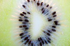 Free Kiwifruit Royalty Free Stock Photography - 6381137
