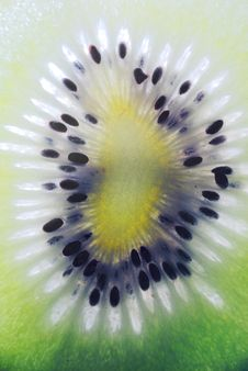 Free Kiwifruit Stock Photos - 6381153