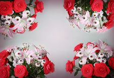 Free Lilies And Roses In Background Stock Photo - 6382580