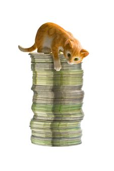 Free Cat On The Rouleau Of Discs Royalty Free Stock Photography - 6383937