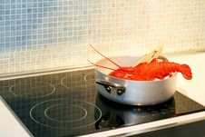 Free Lobster In Pot Royalty Free Stock Photos - 6383978